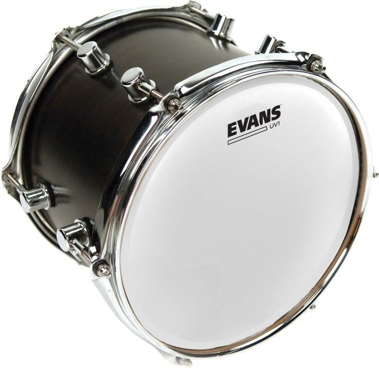 "Evans B10UV1 UV1 Coated 10"""