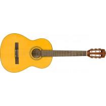 Fender ESC80 Educational Series, WN