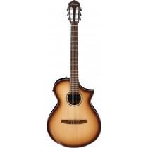 Ibanez AEWC300N-NNB - Klassisk gitar