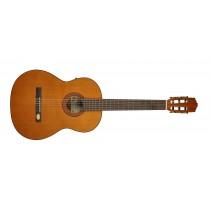 Salvador Cortez CC-22E Solid Top Artist Series classic guitar, solid cedar top, sapele back and sides, Fishman ISY-201 electronics