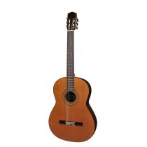 Salvador Cortez CC-60-BA Solid Top Concert Series 6-string bass guitar, solid cedar top, with deluxe case