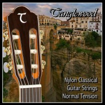 Tanglewood TWGS C - Classical Guitar Strings