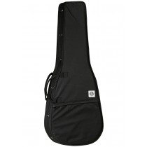 TANGLEWOOD TWSDC Deluxe Black Hard Foam Case Dreadnought Size